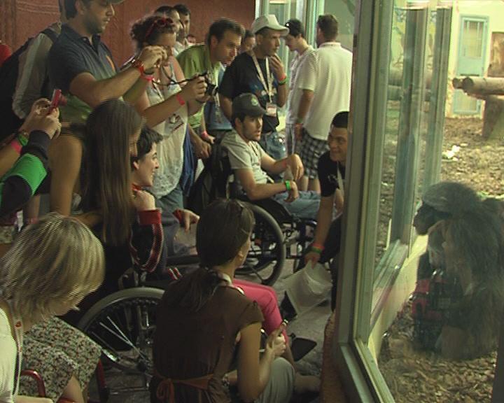 Mozgássérültek az Állatkertben