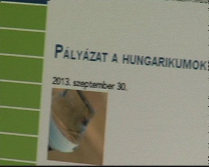 145 millió Hungarikum pályázatra