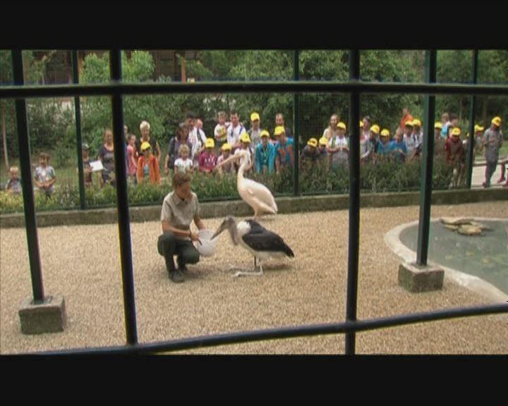 Új lakó az állatkertben