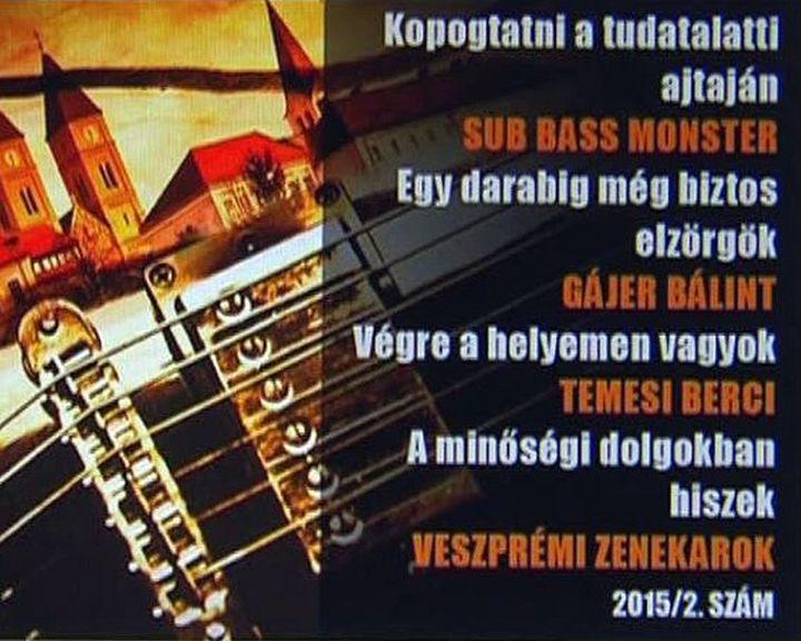 Zene a Veszprém Portréban