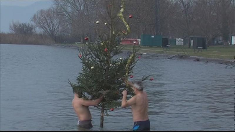 Karácsonyfa a Balatonban