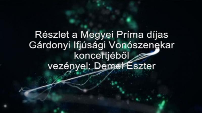 Részlet a Megyei Príma díjas Gárdonyi Ijfúsági Vonószenekar koncertjéből