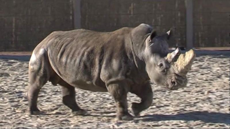 Sikeresek az állatkerti fejlesztések